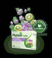 Phytoxil Transit Comprimés B/20 à BRUGUIERES