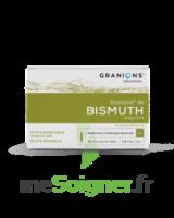 Granions De Bismuth 2 Mg/2 Ml S Buv 10amp/2ml à BRUGUIERES