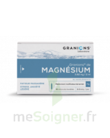 Granions De Magnesium 3,82 Mg/2 Ml S Buv 30amp/2ml à BRUGUIERES
