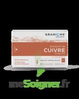 Granions De Cuivre 0,3 Mg/2 Ml S Buv 30amp/2ml à BRUGUIERES