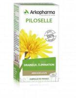 Arkogélules Piloselle Gélules Fl/45 à BRUGUIERES