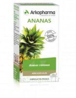 Arkogélules Ananas Gélules Fl/45 à BRUGUIERES