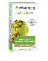 Arkogélules Garcinia Gélules Fl/45 à BRUGUIERES
