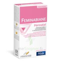 Pileje Feminabiane Périnatal 28 Gélules Blanches Et 28 Gélules Jaunes à BRUGUIERES