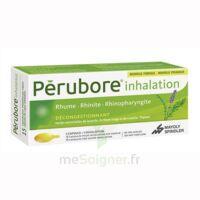 Perubore Caps Inhalation Par Vapeur Inhalation Plq/15 à BRUGUIERES