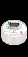 Beurre De Karité - 100% Bio - 100 G à BRUGUIERES