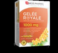 Forte Pharma Gelée Royale 1000 Mg Solution Buvable 20 Ampoules/10ml à BRUGUIERES