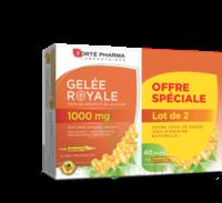 Forte Pharma Gelée Royale 1000 Mg Solution Buvable 2*b/20 Ampoules/10ml à BRUGUIERES