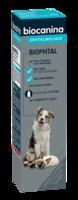 Biophtal Solution Externe 125ml à BRUGUIERES