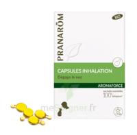 Aromaforce Caps Inhalation Bio B/15 + Inhalateur à BRUGUIERES