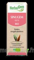 Herbalgem Sinugem Solution Buvable Bio Fl Cpte-gttes/30ml à BRUGUIERES