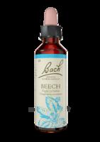 Fleurs De Bach® Original Beech - 20 Ml à BRUGUIERES