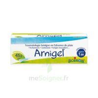 Boiron Arnigel Gel T(alumino-plastique)/45g à BRUGUIERES