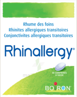 Boiron Rhinallergy Comprimés B/40 à BRUGUIERES